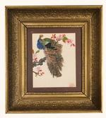 French School Watercolor Peacock in Tree C 1900-20